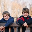 Stock Photo: Outdoors portrait of two young happy brothers