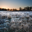 Stock Photo: Frosty Winter landscape across field towards vibrant sunrise sky