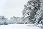 English rural countryside Winter snow landscape — Stock Photo