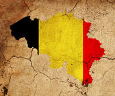 Belgium grunge map outline with flag — Stock Photo