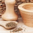 图库照片: Cumin Seeds in rustic kitchen scene with wooden utensils