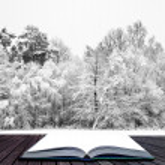 Постер, плакат: Winter wonderland scene in pages of magical book