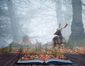 Fallow deer stag in pages of magical book — Stock Photo