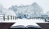 Winter wonderland snow landscape in pages of magic book — Stock Photo