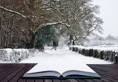 Path coming out of book into Winter wonderland landscape — Stock Photo