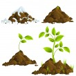 Stock Vector: Growing plants