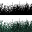 Grass borders — Stock Photo