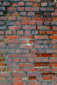 Brick wall.5 — Stock Photo