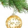 Stock Photo: Golden ornament christmas ball in a fir tree