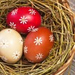 Colorful easter egg in the basket — Stock Photo #9473910