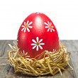 Colorful easter egg in the nest — Stock Photo