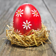 Colorful easter egg — Foto Stock