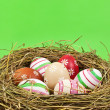 Easter eggs in nest — Lizenzfreies Foto