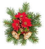 Decoración de la navidad en un fondo blanco — Foto de Stock