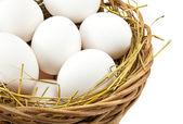 Vita ägg i korgen — Stockfoto