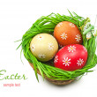Easter eggs in the basket — 图库照片