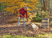 Raking leaves — Stock Photo