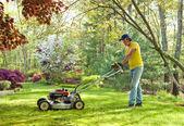 Klipper gräsmattan — Stockfoto