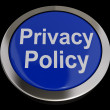 Privacy Policy Button In Blue Showing Company Data Protection Te — Foto de Stock