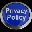 Privacy Policy Button In Blue Showing Company Data Protection Te — ストック写真