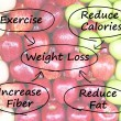 Stock Photo: Weight Loss Diagram Shows Fiber Exercise Fat And Calories