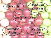 Weight Loss Diagram Shows Fiber Exercise Fat And Calories — Stock Photo