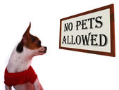 No Pets Allowed Sign Showing Unauthorized Forbidden Zone — Stock Photo