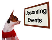 Upcoming Events Sign Showing Future Occasions Schedule For Dogs — Stock Photo