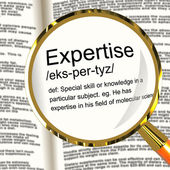 Expertise Definition Magnifier Showing Skills Proficiency And Ca — Stock Photo