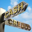 Cash Or Credit Directions On A Signpost — Stock Photo