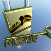 Padlock With Riches Key Showing Wealth Savings And Fortune — Stock Photo