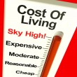 Stock Photo: Cost Of Living Expenses Sky High Monitor Showing Increasing Cost
