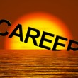 Career Word Sinking Showing Failing Or Lost Job Prospects — Stock Photo #9106551