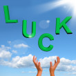 Catching Luck Word Representing Risk Fortune And Chance — Stock Photo