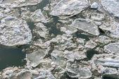 Ice on water — Stockfoto