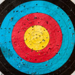 Practice target with a lot of shots — Stock Photo #8799534