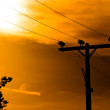 Stock Photo: High voltage post against sky at dusk