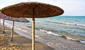 Okyanusu kıyısında sakin sahne — Stok fotoğraf