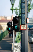 Пешеходный лампа в городе — Стоковое фото