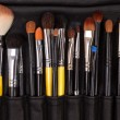 Closuep of makeup tools — Stock Photo #9824816