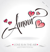 'Amour' hand lettering (vector) — Stockvector