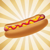 Realistic hot dog vector illustration — Stock Photo
