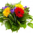 Colorful flowers bouquet isolated on white background. - Zdjęcie stockowe
