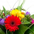 Colorful flowers bouquet — Stock Photo #10502344