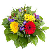 Colorful flowers bouquet isolated on white background. — Zdjęcie stockowe