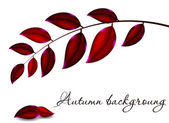 Autumnal leaf background, vector illustration — Stock Photo