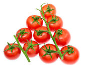 Branch of cherry tomatoes isolated on white background — Stock Photo