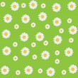 Beautiful seamless daisy background — Stock Photo