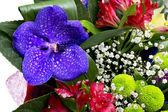 Colorful flowers bouquet — Foto de Stock