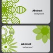 Set of nature gift cards vector illustration — Stock Photo